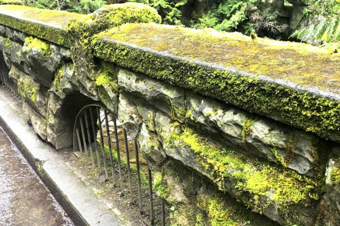 a moss-covered stone bridge